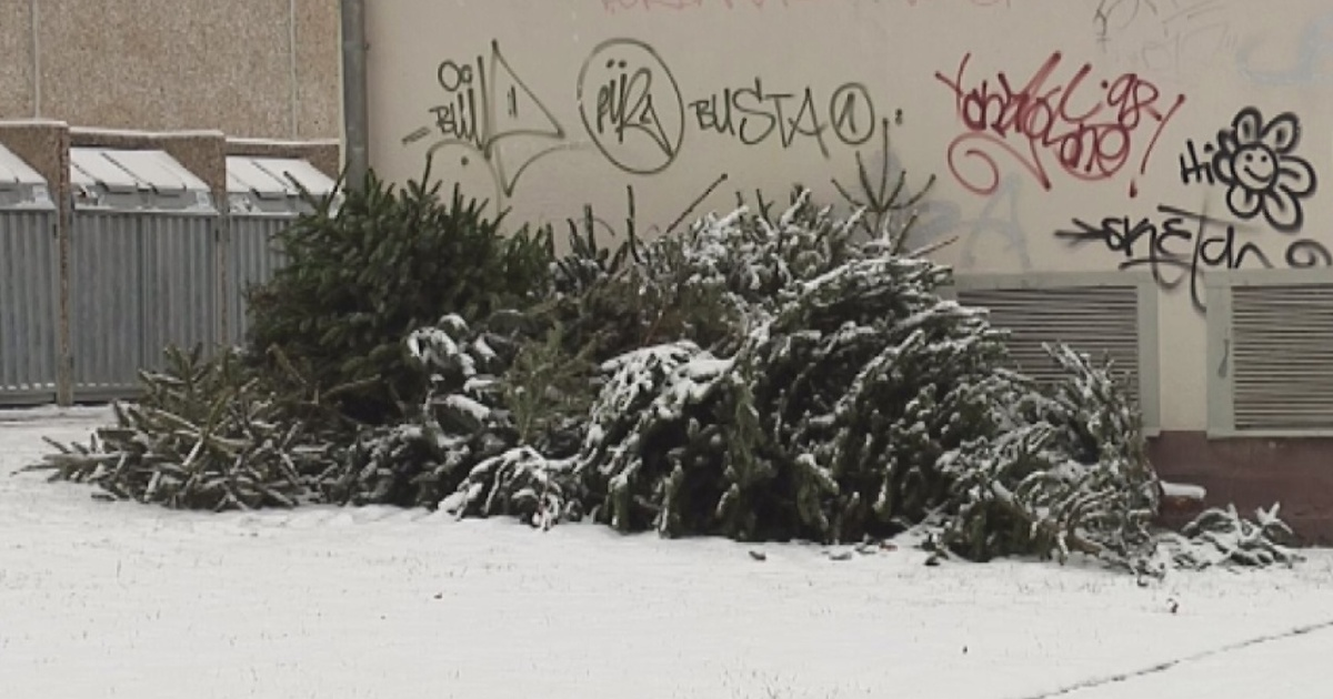 best 28 weihnachtsbaum entsorgen dresden weihnachtsbaum dresden my 28 images dresdner 21 5. Black Bedroom Furniture Sets. Home Design Ideas