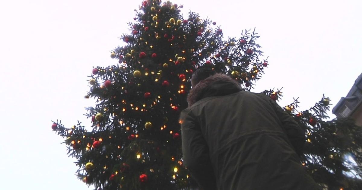 wohin mit dem weihnachtsbaum nach den feiertagen. Black Bedroom Furniture Sets. Home Design Ideas