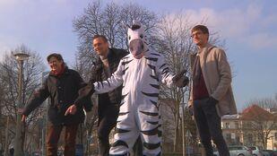 Zebra und Politiker starten Kampagne, © Sachsen Fernsehen