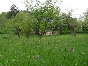 © Umweltzentrum Freital e.V.
