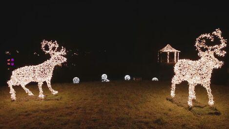 © Christmas Garden GmbH