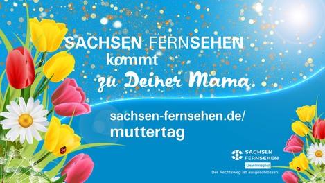 Muttertags-Aktion bei SACHSEN FERNSEHEN www.sachsen-fernsehen.de/muttertag