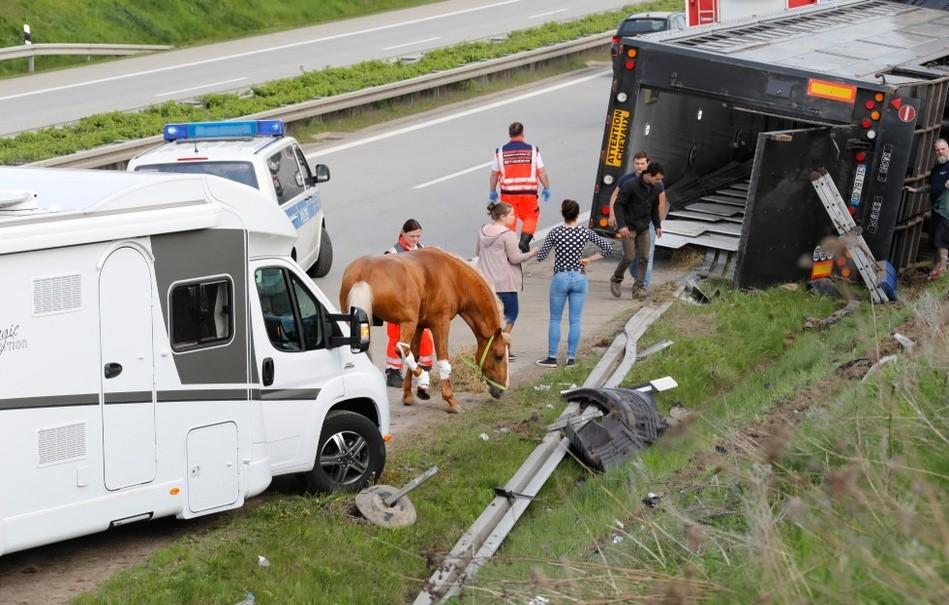APASSIONATA LKW kippt auf Autobahn um, Pferde verletzt