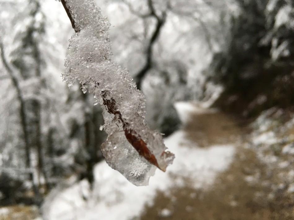 Winter, Schnee, Wetter, © Sachsen Fernsehen
