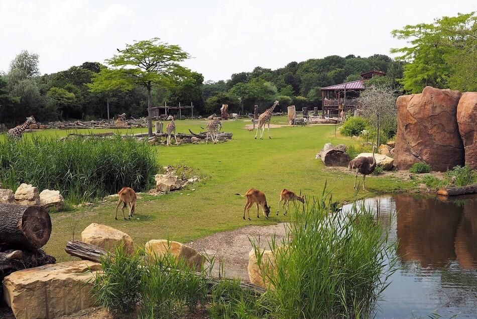 © Zoo Leipzig