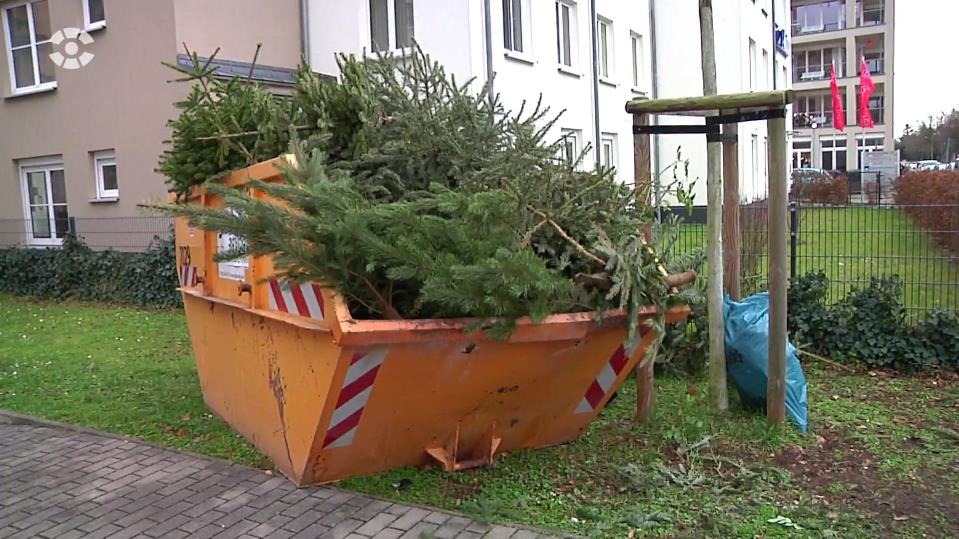 Weihnachtsbaum stadtreinigung leipzig